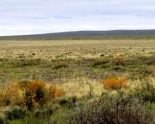 Puelches, la Pampa - 9120has