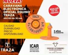 Caravana Electrónica Oficial Equino Traza