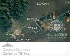 Campo de 765 Ha Alambrado Capayán - Catamarca - Eolico/solar