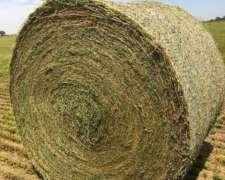 Vendo Rollos de Alfalfa 1º Calidad