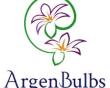 Argenbulbs - Patio y Jardín