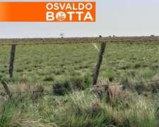 200 Has en General San Martin, la Pampa