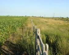 Vendo Excelente Campo Agrícola