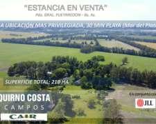 Campo Venta. Batan. Sierra de los Padres. 210 HA. Agrícola