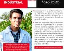 Ingeniero Agrónomo Importante Compañía Industrial