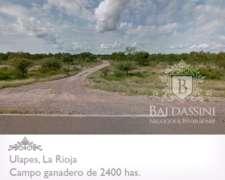 Campo Ganadero de 2400 Has. en Ulapes Sobre Ruta 79