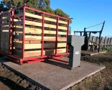 Bascula Para Pesar Hacienda 3.000 Kg Para 6 Animales