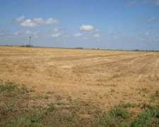 Vendo 220 Has Excelente Campo Agricolaganadero en L Pampa