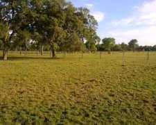 822 Hectareas Ganaderas En Makalle - Chaco