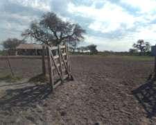 Vanta o Arrendamiento Campo Armado 1700 Hectareas Esquina