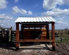 Balanza / Báscula - Hacienda 1.500kg - 1 Animal - Donher
