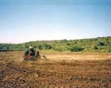 Campo Ganadero en Saladillo, San Luis