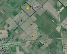 Excelente Campo Agrícola en el Triunfo