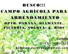 Busco Campo Agrícola para Arrendamiento