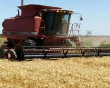 Agroservicio De Cosecha 2019