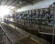 Estancia 3 Opciones - Agricola -tambo 350vacasy Feedlot