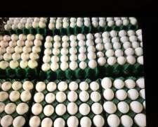 Huevos Directos De Granja