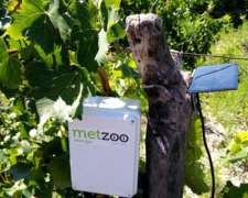 Metzoo Smart Agro - Monitoreo de Cultivos