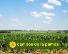 La Pampa - Venta Excelente Estancia 9.000 Ha Calden-cultivo