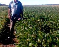 Oportunidad Campo Agrícola Chaco en Siembra Directa