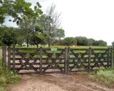 Campo Agrícola-ganadero/ Juan José Castelli, Chaco.