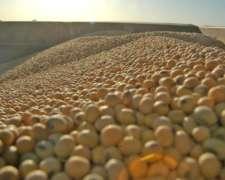 Vendo Soja Condición Camara En F2