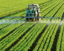 Responsable Técnico De Agricultura, 9 De Julio, Prov. Ba.