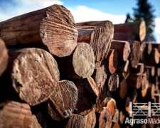 Poste Quebracho Colorado Entero 2,20m Agraso 2020