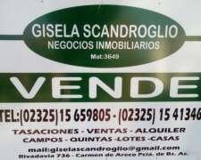 Se Vende Campo de 1.500 Has en Chivilcoy