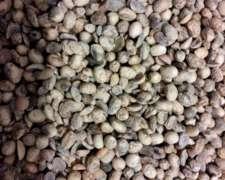Compro Soja Dañada, Avería, Humedad. Cereal en MAL Estado.