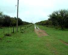 Campo Ganadero en Alquiler para 3.500 Cabezas Norte la Pampa