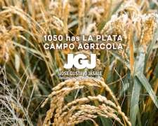 1050 Has la Plata - 70% Agrícola (triguero)
