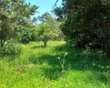 Fracción en Venta en Punta Indio - Reserva Forestal.