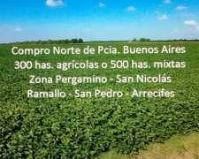 Compro Campo Norte Pcia. Buenos Aires