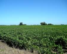 Vendo Con Financiacion 55 Has. Agrícolas Rosario
