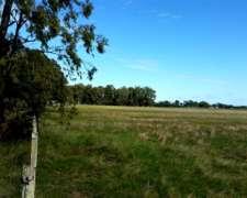 4200 Has Estupendo Campo en Uruguay
