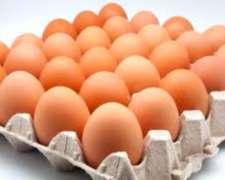 Huevos De Gallina De Granja