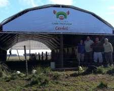 Oferta Contado - Túnel de Viento para Cerdos