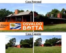 2500 Hectáreas, Campo Mixto en Cerro Largo, Uruguay