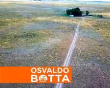 360 Hectáreas en Bernasconi, la Pampa