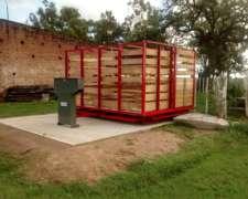 Balanza Hacienda 5000 Kg - Anticipo