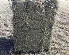 Venta Fardos y Rollos de Alfalfa