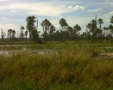 Mburucuya - Estancia 4000 Has - Muy Armadas Tipo Bs As
