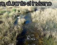 17,300has Ganadero.laguna Grnde.valcheta,r Negro $64usd