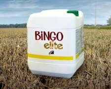 Bingo Elite Herbicida - Fomesafen 12,5% ME