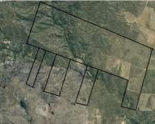 Vendo 1000 HA. de Campo en Tilisarao - Renca - San Luis