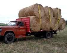 Dodge 800, Caja Playa, Perkins Fase 2