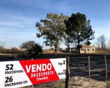 Finca De 52 Has En Mendoza - Santa Rosa