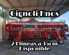 Apache 27000+ de 23 a 35 cm Grano Grueso Vende Cignoli Hnos.