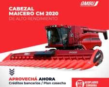Cabezal Maicero cm 2020 Ombu